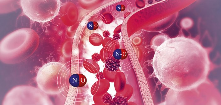 Connection Between Nitric Oxide and Fighting Cancer